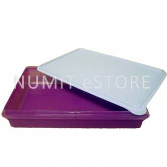 Tupperware Limited Edition Bake to Basic B2B Snack Store 3.6L (Purple)