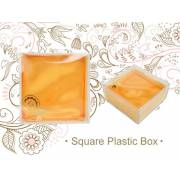 Small Square Plastic Box No Wording